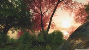 crysis_game__sakura-wallpaper-2560x1440